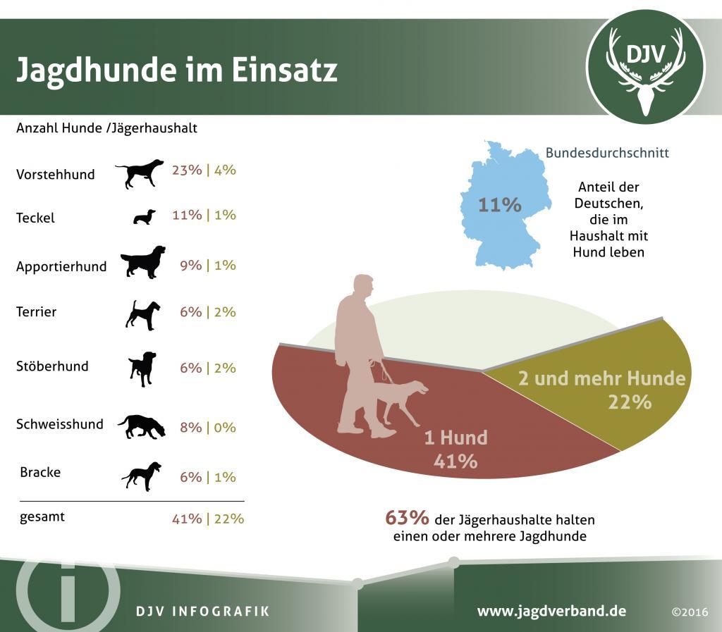 Jagdhund ist Familienmitglied mit Beruf